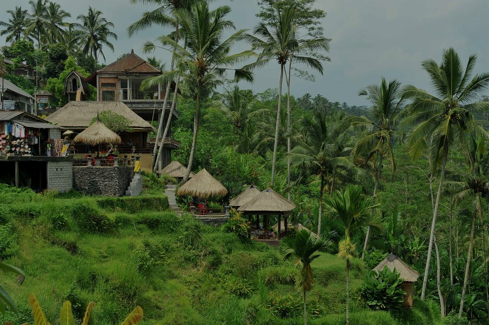 Ubud, the luxury real estate hotspot in Bali - Indonesia