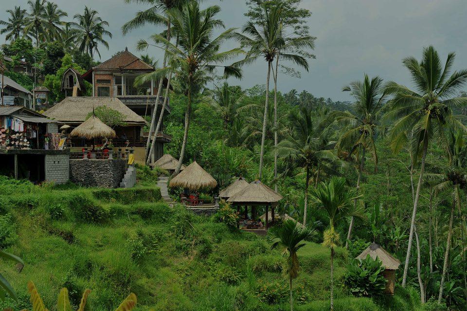 Ubud, le hotspot de luxe à Bali - Indonésie