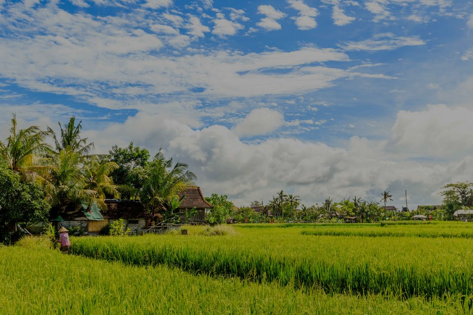 Umalas, the luxury real estate hotspot in Bali - Indonesia