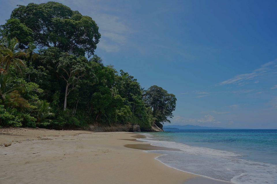 Punta Uva, le Hotspot de luxe à Limón - Costa Rica